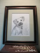 Bailey. 11x14, graphite, 2010.