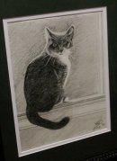 Sweet Pea. 8x10, graphite, 2010.