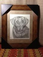Bruschi. 8x10, graphite, 2012.