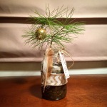 Charlie Brown tree in a mason jar
